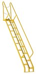 Alternating Tread Ladder, 10ft High